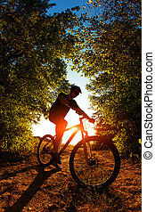 Man Cyclist with bike on sunset - Silhouette of a biker on...