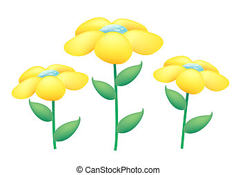 yellow wild flowers on the white background