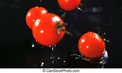 Slow motion of tomatoes falling with water drops on black...