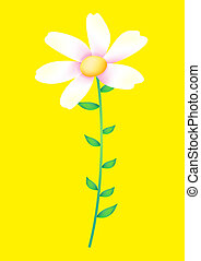 wild flower - a white flower isolate on the yellow...