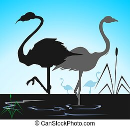 Cranes	 - Illustration of two cranes in water