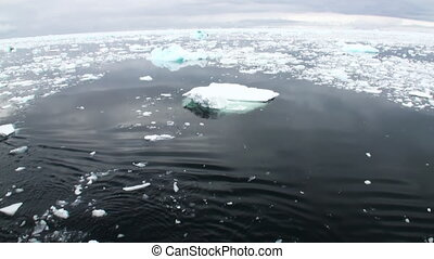 Ice floats on the ocean surface in the Antarctic - Ice...