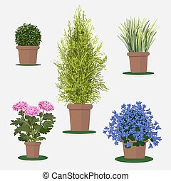 Illustration of flowers in pot. - Vector flat illustration...