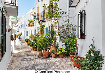 Picturesque narrow street decorated with plants. Frigiliana,...