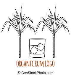 Modern line style logo, branding,  logotype,  badge  with sugar cane and a glass of rum.  Rum symbol. Vector illustration.  Thin line icon.