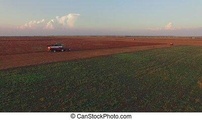 AERIAL VIEW. Harvesting Farm Machinery Working At Buckwheat Field