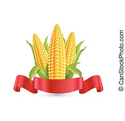 Vector corn. Three ear of corn with leaves and red ribbon....