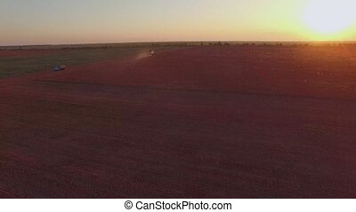 AERIAL VIEW Harvesting Machine Cutting Buckwheat Field At...
