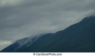 Clouds Moving Over Forest Mountains