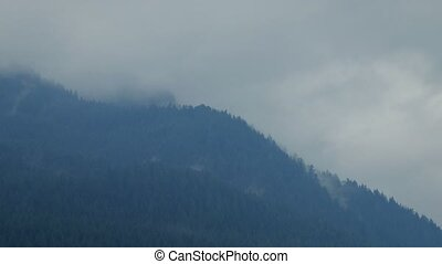 Dramatic Misty Mountains - Misty over the tree line of a...