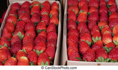 strawberry boxes for sell