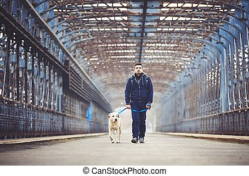 Man with his dog - Man walking with his yellow labrador...
