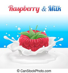 Raspberry Dipped in Milk with Splashes. Drop and Sweet, Food...