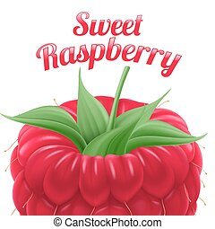 Poster Sweet Raspberry Fruit and Dessert Space for Text
