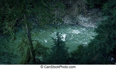 Large River In Wilderness Forest - High angle view looking...