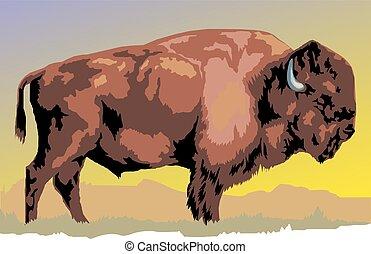 wild bison animal as symbol of big fauna