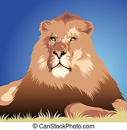 wild lion head as symbol of king animal