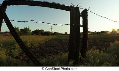 Barbed wire fence summer - In backlight setting sun garden...