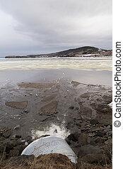 Sewage Drain and Seagulls