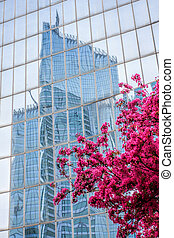 Paris La Defense with spring tree in France