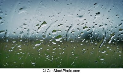 Rain On Window Looking Out At Natur - Closeup of rain drops...