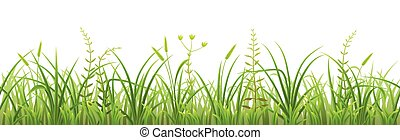 Seamless green grass