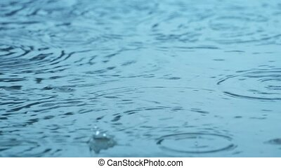 Rain Drops On Water Surface