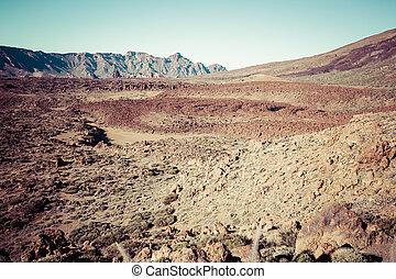 Landscape in Teide National Park, Canary Island Tenerife,...