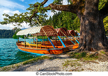 Traditional wooden boats Pletna on lake Bled,...
