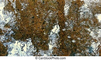 Shallow Woodland Stream - Wide shot of water surface...