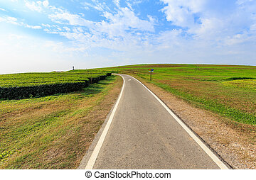 Outdoor asphalt road, exercise bike paths on the hill in...