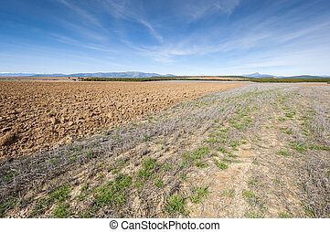 Ploughed and stubble fields in an agricultural landscape in...