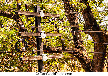 Telegraph pole - a small old telegraph pole with wires in...