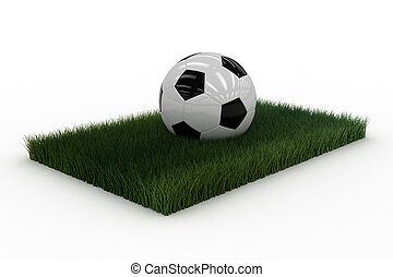 Soccerball on lawn