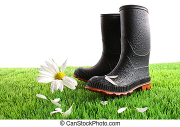 Rubber boots with daisy in grass