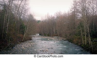 Wide River In Afternoon Woods - Landscape with large river...