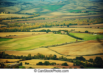 Wavy fields in Tuscany at sunset, Italy. Natural outdoor...