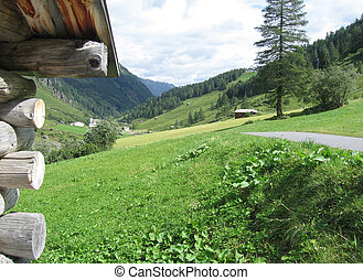 Hayfield In The Alps