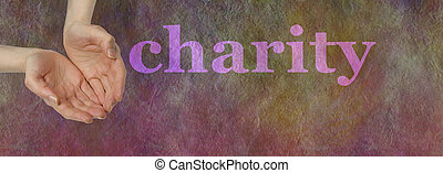 Our Charity Needs your Donation - Wide banner with a woman's...