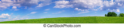 Panoramic landscape of summer meadow - Panoramic view of...