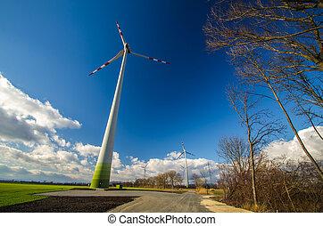 high pinwheel in nature