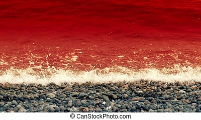 Sea Of Blood - Sea of blood - could be used as a metaphor...