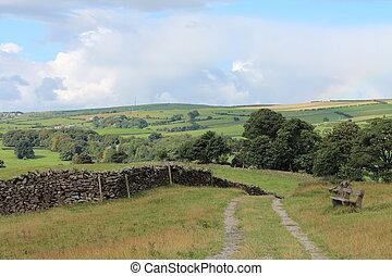 Rolling Hills and Farmland