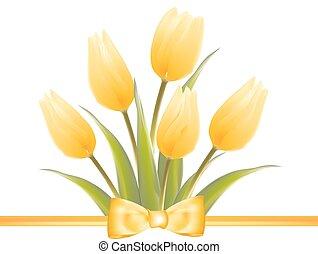 Yellow tulip spring flowers.