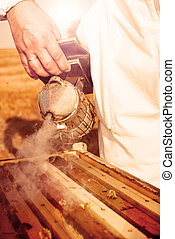Beekeeping tool