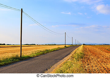 Country Road - Country road through farmland near Valensole,...