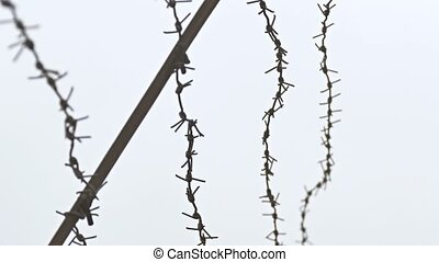 Barbed wire on background of gray sky conclusion prison -...