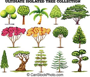 Ultimate isolated tree collection set illustration