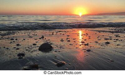 Sunset on the Beach - waves seashell beautiful sunset on the...