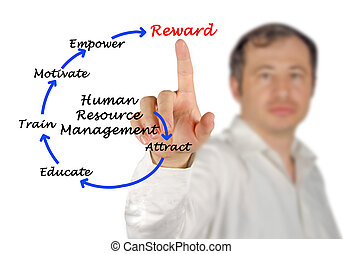 Diagram of human resource management